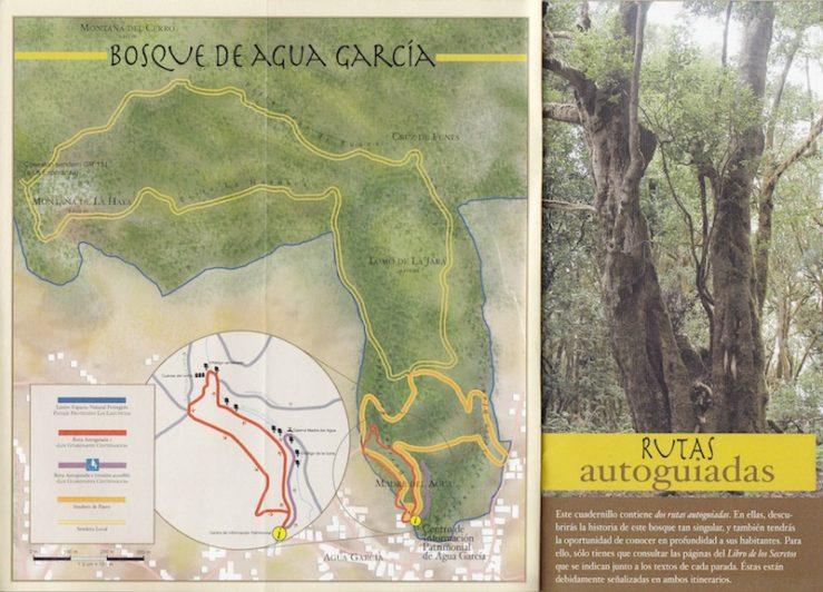 Bosque de Agua Garcia