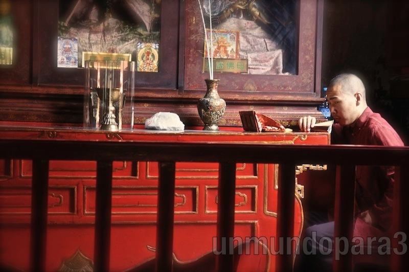 Monje rezando en el Templo Lama