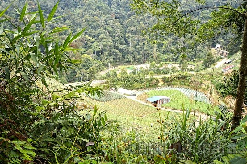 Granja especilista en Agroturísmo