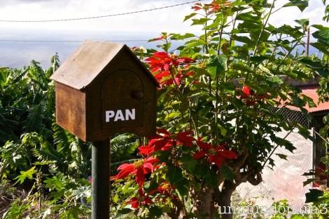 Pernoctas en Tenerife