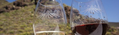 Por amor al vino