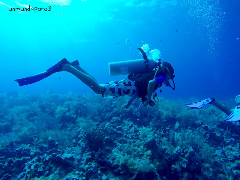 Submarinismo en Utila