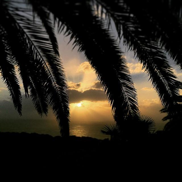 Buenos días miércoles!! Buenos días a todos desde #Tenerife #Canarias #sunset#sunrise