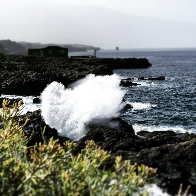 Belleza salvaje #ElHierro #ElHierroTrip #Canarias