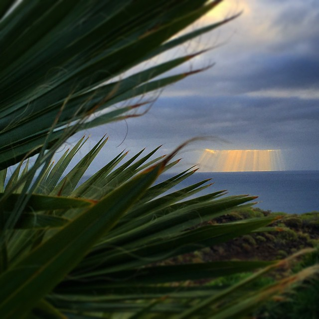 Buenos y fríos días desde el paraíso #Tenerife #Canarias #sunrise #photo