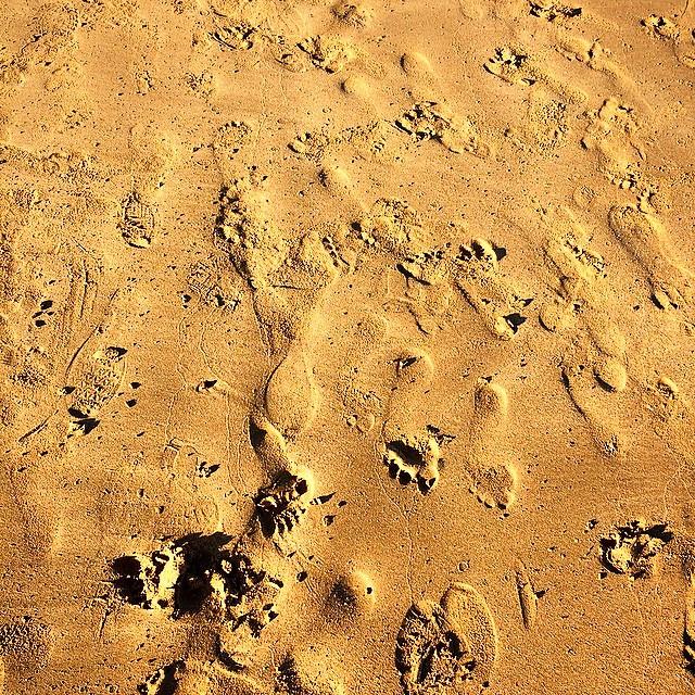 De aquí para allá... #beach #Tenerife #playa #Canarias #travel