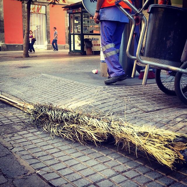 En #SantaCruzdeTenerife somos muy ecológicos, barremos las calles con hojas de palmera #ecologia #ecologicos #quesuerteviviraqui